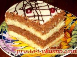 biskvitnyj-tort-so-smetanoj-ochen-vkusnyj-i_1.jpg
