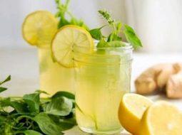 imbirnyj-limonad-v-domashnih-uslovijah-recept-s_1.jpg