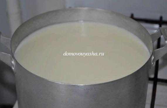 Как из домашнего молока сделать брынзу 478