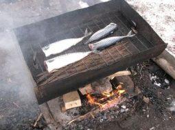 recept-ryba-gorjachego-kopchenija-v-koptilne_1.jpg