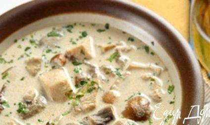 Рецепт: Грибной сливочный суп на RussianFood.com