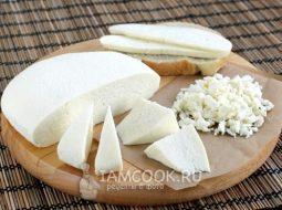 syr-iz-kozego-moloka-s-acidin-pepsinom-recept_1.jpg