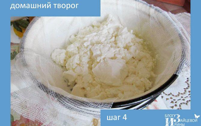 Творог в домашних условиях из кислого молока рецепт с пошагово