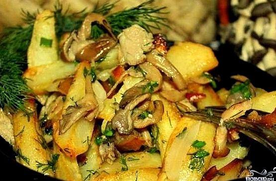 Вешенки жареные с картошкой рецепт с фото