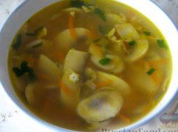 gribnoj-sup-iz-svezhih-shampinonov-recept-s-foto_1.jpg