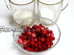 kljukvennyj-kisel-recept-iz-zamorozhennoj-kljukvy_1.jpg