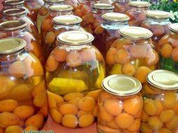 kompot-iz-abrikosov-i-jablok-na-zimu-recept-s-foto_1.jpg