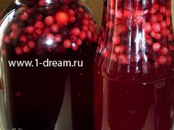kompot-iz-krasnoj-i-chernoj-smorodiny-recept-na_1.jpg