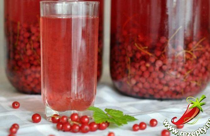 Компот из красной смородины рецепт на лето