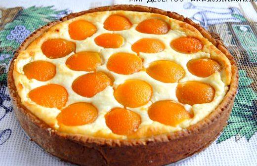 Пирог с абрикосами и творогом рецепт