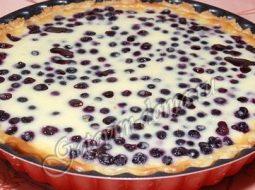 Пирог с черной смородиной рецепт с фото пошагово в духовке