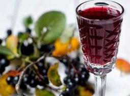prostoj-recept-vino-iz-chernoplodki-v-domashnih_1.jpg
