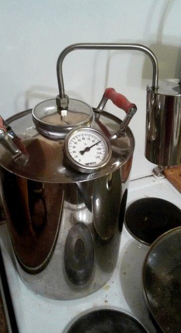 Рецепт абсента из самогона в домашних условиях