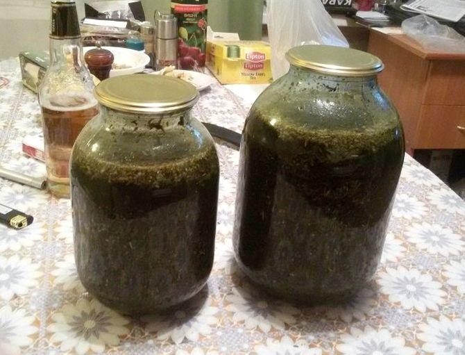 Рецепт абсента в домашних условиях из самогона