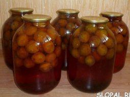 recept-kompota-iz-sliv-na-zimu-na-3-litrovuju_1.jpeg