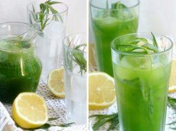 recept-limonada-tarhun-v-domashnih-uslovijah_1.jpg