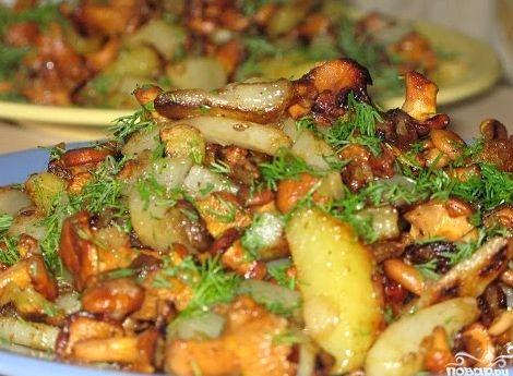 Рецепт лисичек с картошкой в сметане в духовке