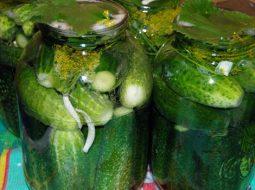 Рецепт засолки огурцов на зиму холодным способом