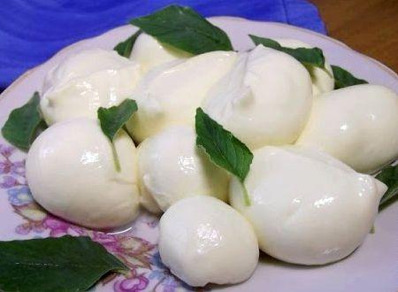Сыр моцарелла в домашних условиях рецепт с фото