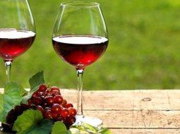 vino-iz-krasnoj-smorodiny-i-kryzhovnika-v_1.jpg