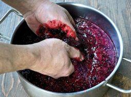 vino-iz-raznyh-jagod-v-domashnih-uslovijah-prostoj_1.jpg