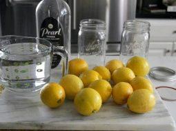 vodka-iz-samogona-v-domashnih-uslovijah-recept_1.jpg